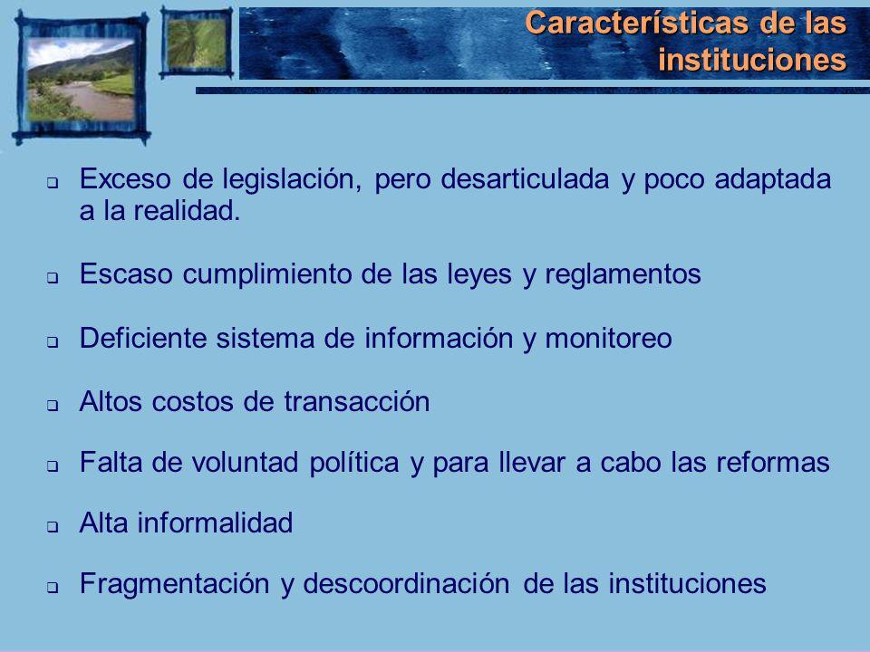 Características de las instituciones Exceso de legislación, pero desarticulada y poco adaptada a la realidad. Escaso cumplimiento de las leyes y regla