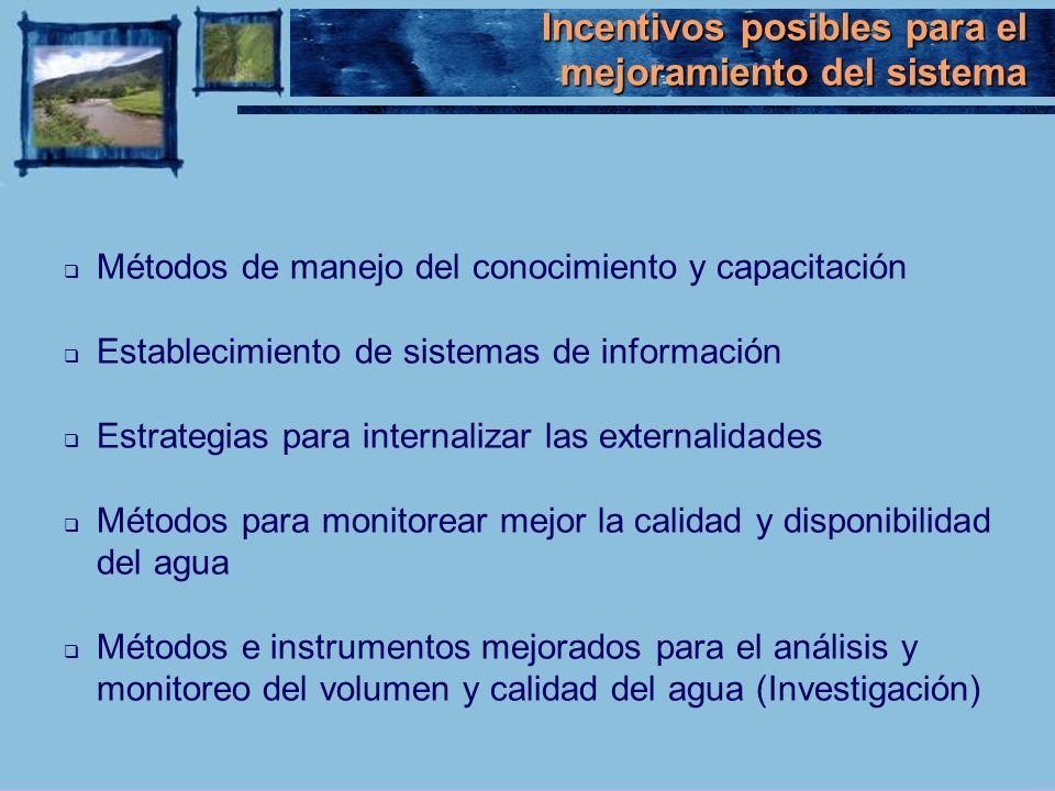 Métodos de manejo del conocimiento y capacitación Establecimiento de sistemas de información Estrategias para internalizar las externalidades Métodos