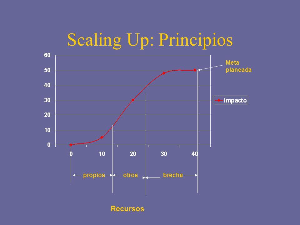 Scaling Up: Principios propiosotrosbrecha Meta planeada Recursos