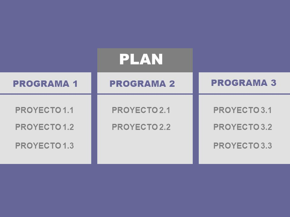 PLAN PROGRAMA 1 PROYECTO 1.1 PROGRAMA 2 PROGRAMA 3 PROYECTO 1.2 PROYECTO 1.3 PROYECTO 2.1 PROYECTO 2.2 PROYECTO 3.1 PROYECTO 3.2 PROYECTO 3.3