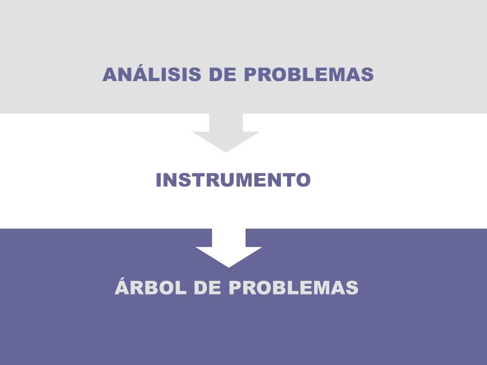 ÁRBOL DE PROBLEMAS INSTRUMENTO ANÁLISIS DE PROBLEMAS
