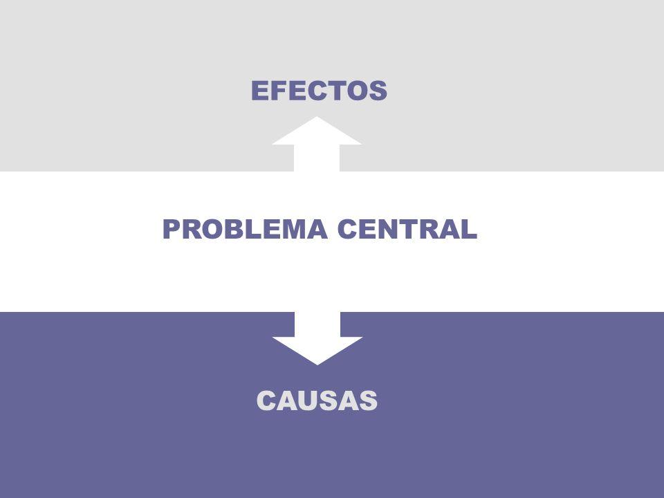 CAUSAS PROBLEMA CENTRAL EFECTOS
