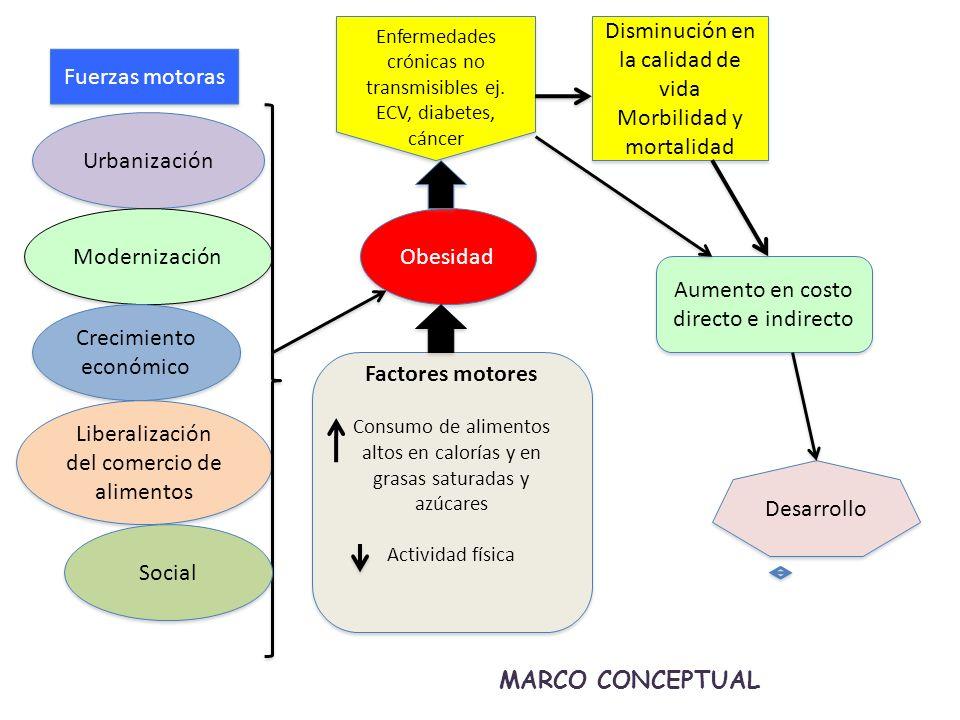 Obesidad Enfermedades crónicas no transmisibles ej.
