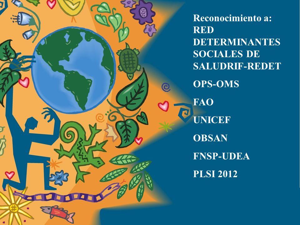 Marco Conceptual Comisión DSS –OMS Solar e Irwin 2005