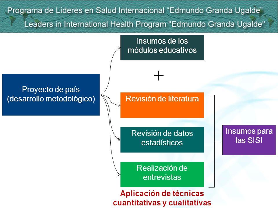 Proyecto de país (desarrollo metodológico) Insumos de los módulos educativos Revisión de literatura Revisión de datos estadísticos Realización de entr