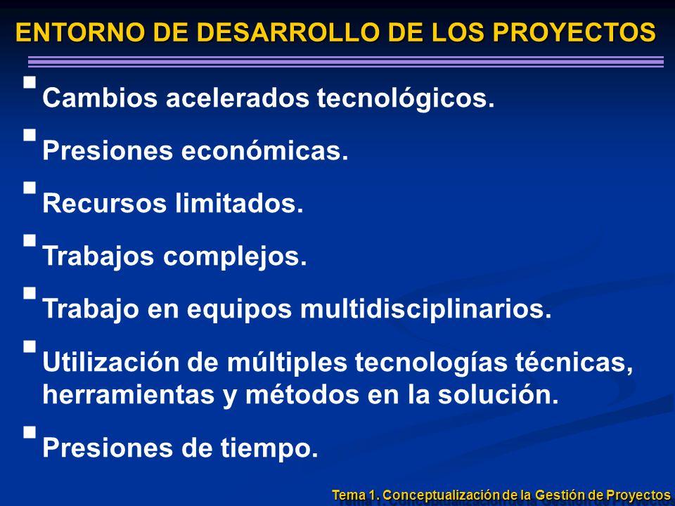 ENTORNO DE DESARROLLO DE LOS PROYECTOS Cambios acelerados tecnológicos. Presiones económicas. Recursos limitados. Trabajos complejos. Trabajo en equip