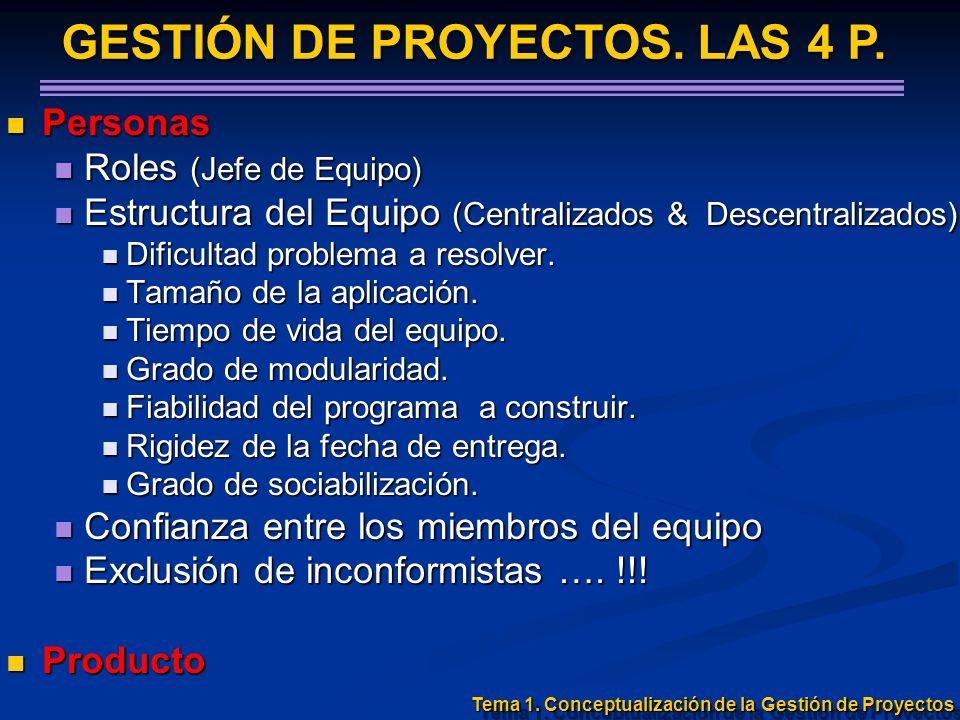 Personas Personas Roles (Jefe de Equipo) Roles (Jefe de Equipo) Estructura del Equipo (Centralizados & Descentralizados) Estructura del Equipo (Centra