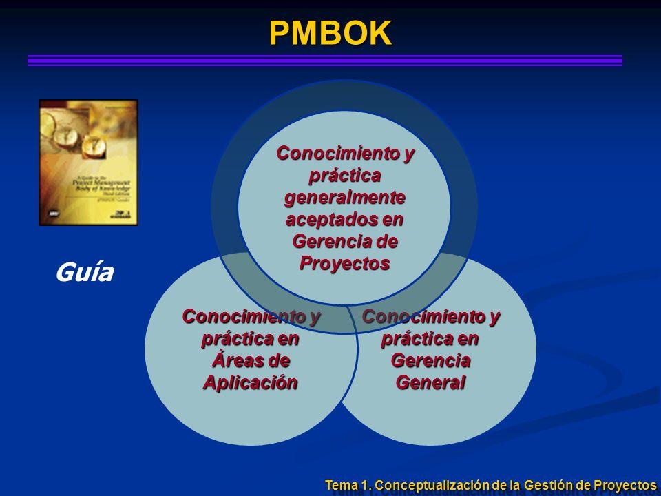 Conocimiento y práctica en Gerencia General Conocimiento y práctica en Áreas de Aplicación PMBOK Conocimiento y práctica generalmente aceptados en Ger