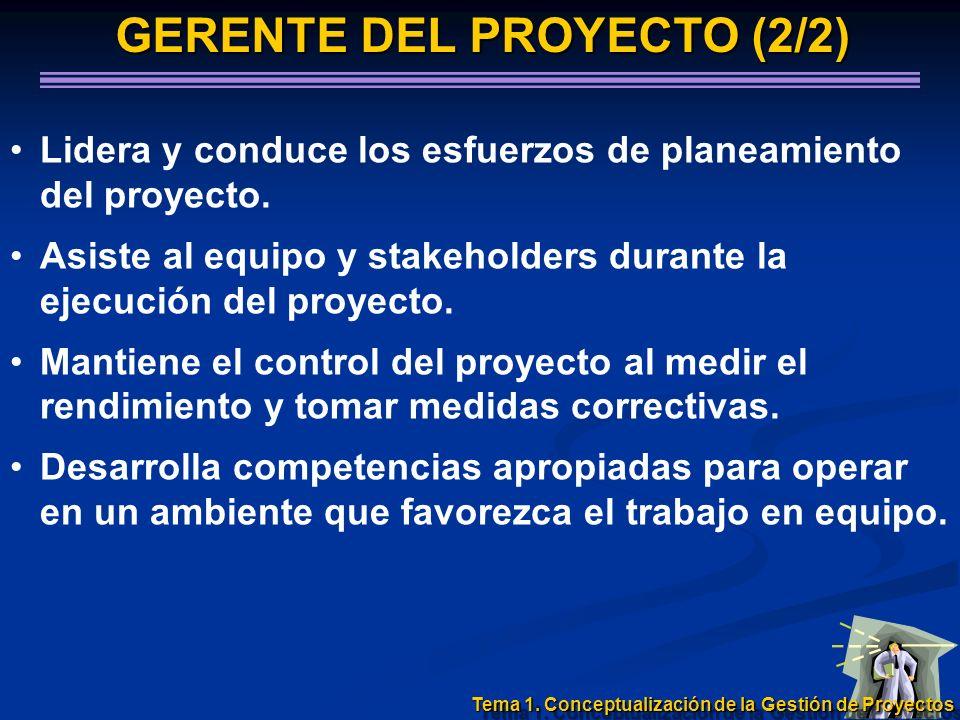 GERENTE DEL PROYECTO (2/2) Lidera y conduce los esfuerzos de planeamiento del proyecto. Asiste al equipo y stakeholders durante la ejecución del proye