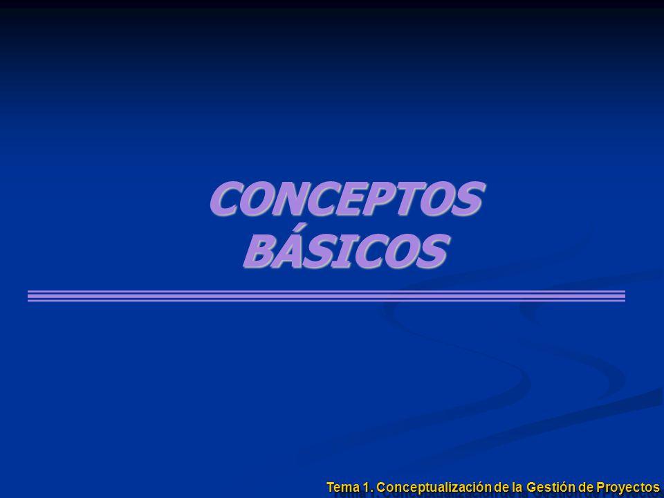 CONCEPTOSBÁSICOS Tema 1. Conceptualización de la Gestión de Proyectos