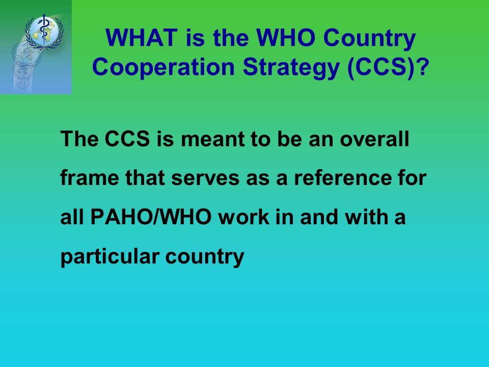 The origins of the Country Cooperation Strategy The formulation of the Country Cooperation Strategy started in 1999.