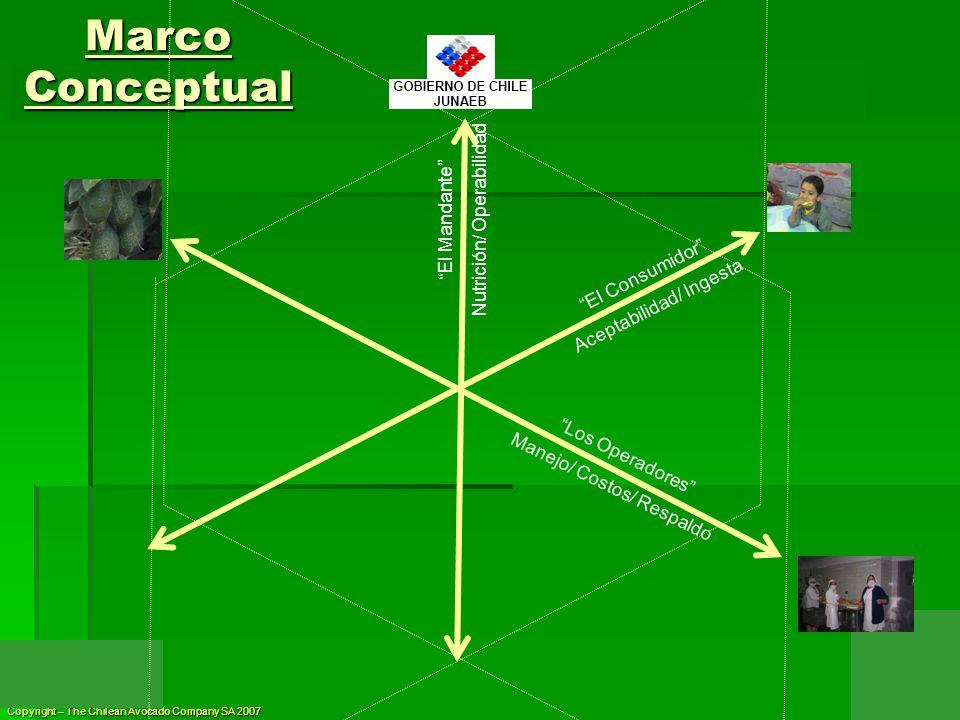 Copyright – The Chilean Avocado Company SA 2007 El Consumidor Aceptabilidad/ Ingesta El Mandante Nutrición/ Operabilidad Marco Conceptual Los Operador