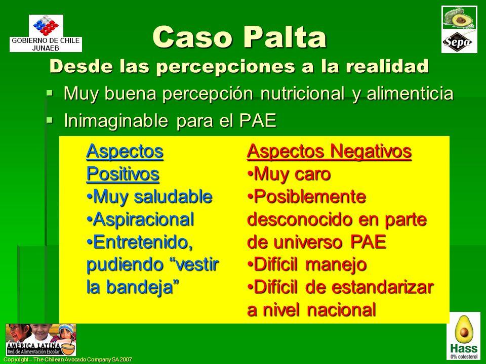 Copyright – The Chilean Avocado Company SA 2007 Caso Palta Desde las percepciones a la realidad Muy buena percepción nutricional y alimenticia Muy bue