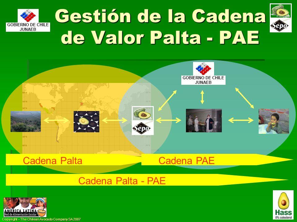 Gestión de la Cadena de Valor Palta - PAE Cadena PaltaCadena PAE Cadena Palta - PAE