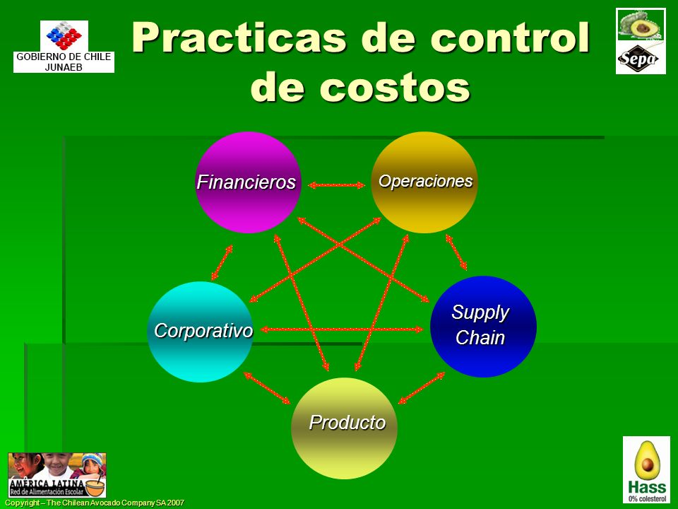 Copyright – The Chilean Avocado Company SA 2007 Practicas de control de costos Producto Operaciones SupplyChain Financieros Corporativo
