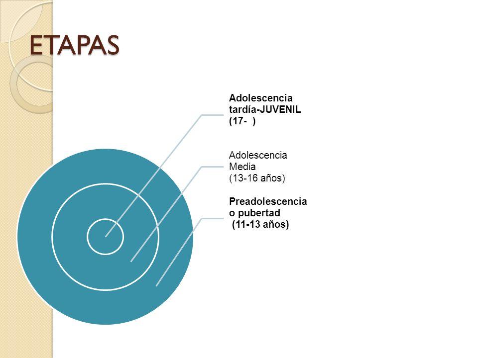 ETAPAS Adolescencia tardía-JUVENIL (17- ) Adolescencia Media (13-16 años) Preadolescencia o pubertad (11-13 años)