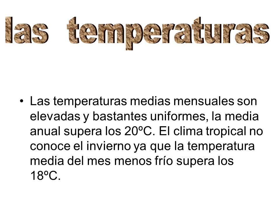 Las temperaturas medias mensuales son elevadas y bastantes uniformes, la media anual supera los 20ºC. El clima tropical no conoce el invierno ya que l