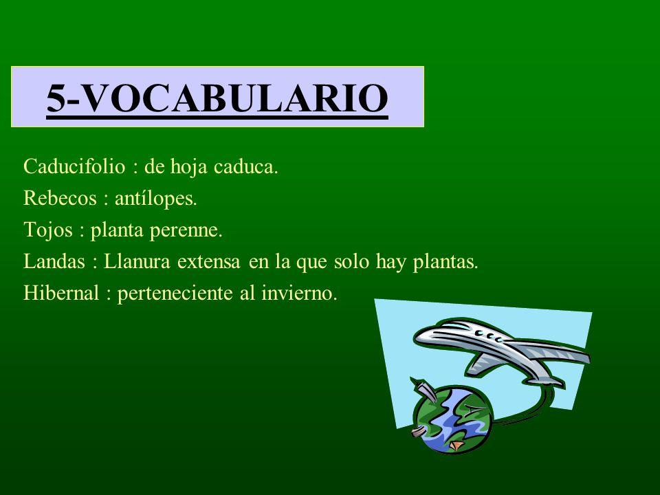 5-VOCABULARIO Caducifolio : de hoja caduca. Rebecos : antílopes. Tojos : planta perenne. Landas : Llanura extensa en la que solo hay plantas. Hibernal