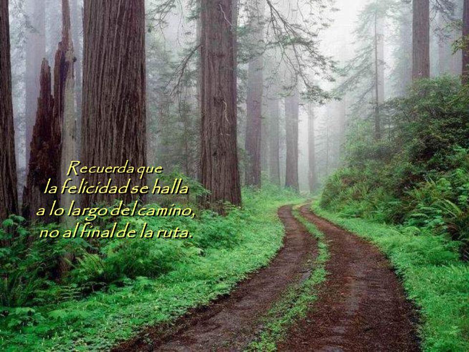Recuerda que la felicidad se halla a lo largo del camino, no al final de la ruta.