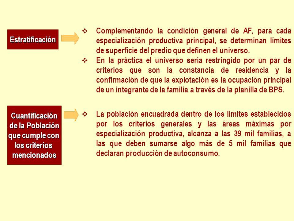 Estratificación Complementando la condición general de AF, para cada especialización productiva principal, se determinan límites de superficie del pre