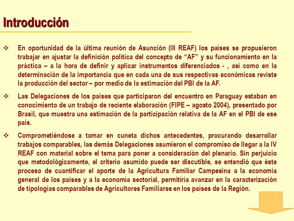 Introducción En oportunidad de la última reunión de Asunción (III REAF) los países se propusieron trabajar en ajustar la definición política del conce