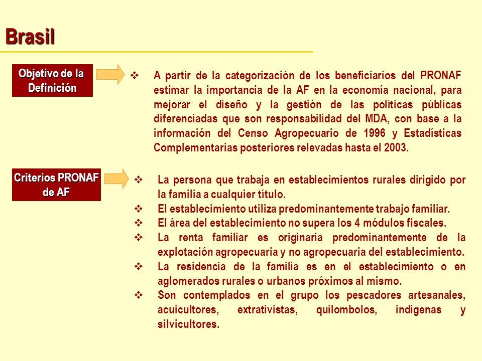 Brasil Objetivo de la Definición A partir de la categorización de los beneficiarios del PRONAF estimar la importancia de la AF en la economía nacional
