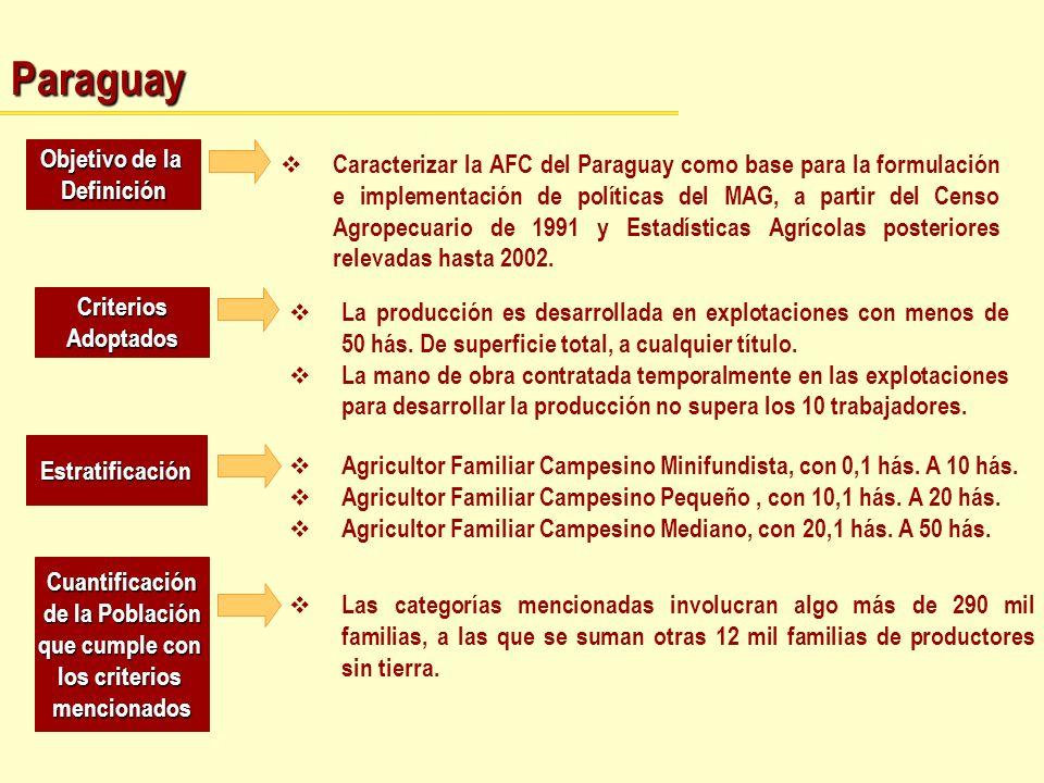 Paraguay Objetivo de la Definición Caracterizar la AFC del Paraguay como base para la formulación e implementación de políticas del MAG, a partir del