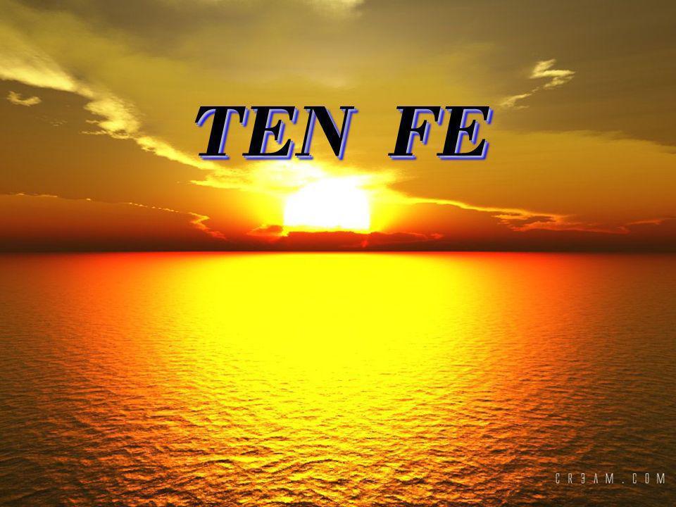 TEN FE TEN FE