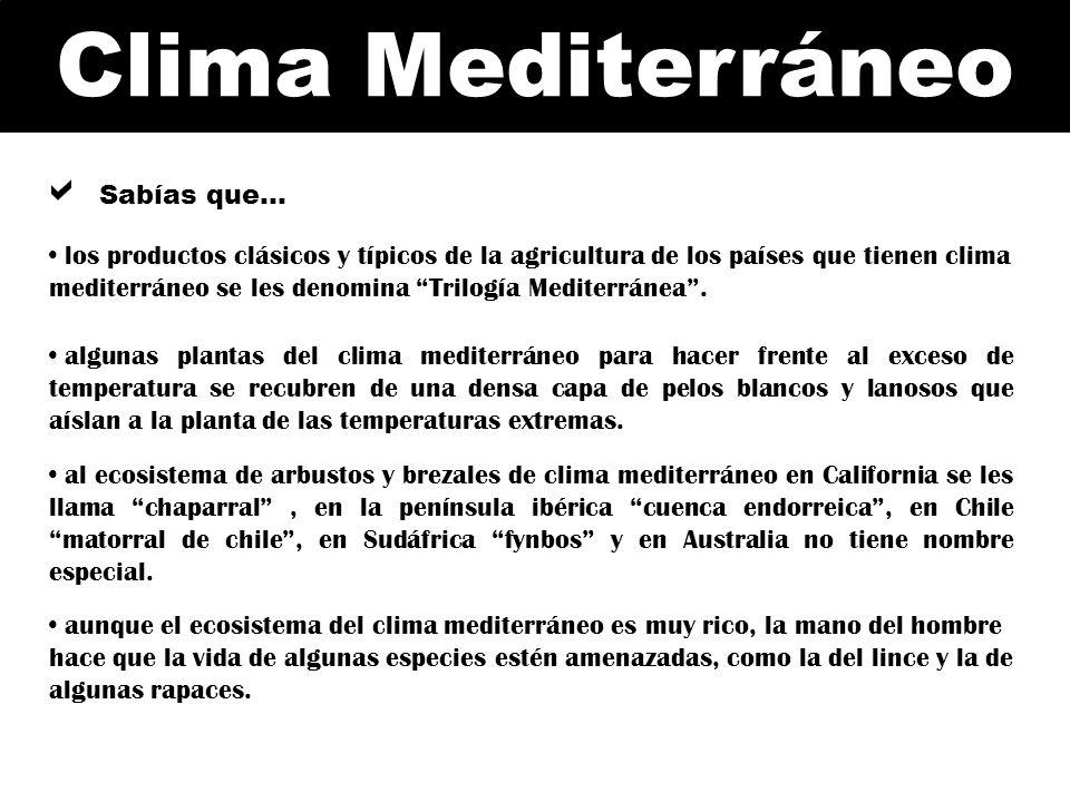 Clima Mediterráneo Sabías que… al ecosistema de arbustos y brezales de clima mediterráneo en California se les llama chaparral, en la península ibéric