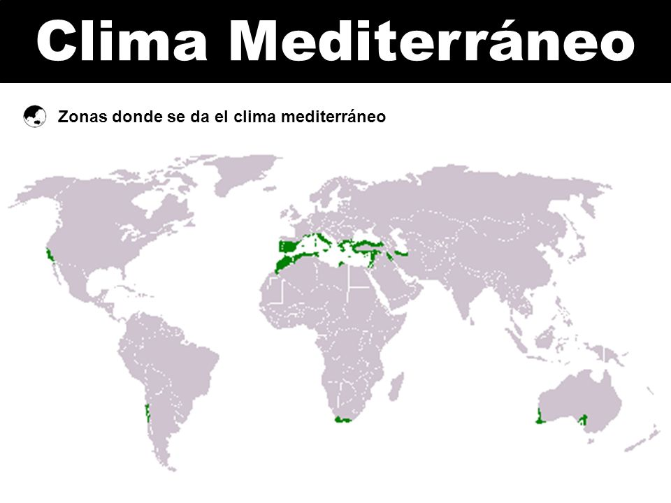 Clima Mediterráneo Zonas donde se da el clima mediterráneo