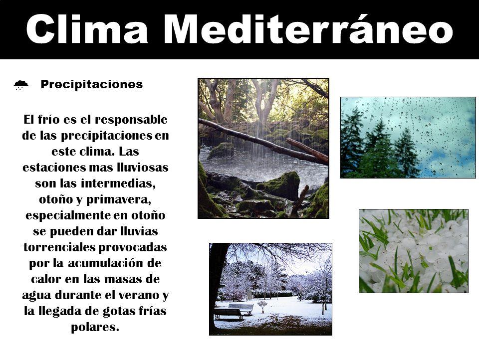 Clima Mediterráneo Precipitaciones El frío es el responsable de las precipitaciones en este clima. Las estaciones mas lluviosas son las intermedias, o