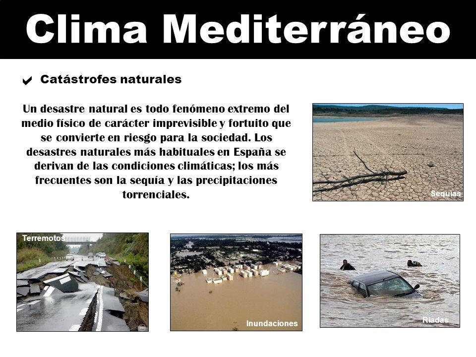 Clima Mediterráneo Inundaciones Riadas Terremotos Tsunami Catástrofes naturales Un desastre natural es todo fenómeno extremo del medio físico de carác