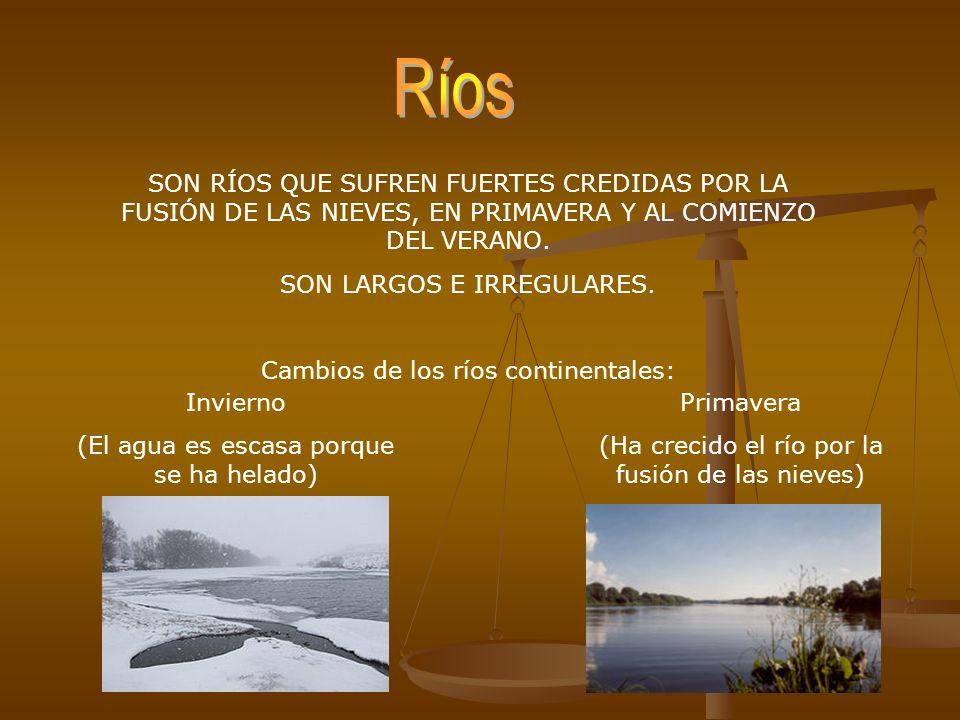 SON RÍOS QUE SUFREN FUERTES CREDIDAS POR LA FUSIÓN DE LAS NIEVES, EN PRIMAVERA Y AL COMIENZO DEL VERANO. SON LARGOS E IRREGULARES. Cambios de los ríos