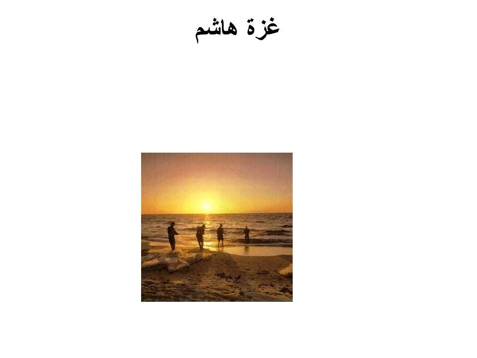 غزة هاشم