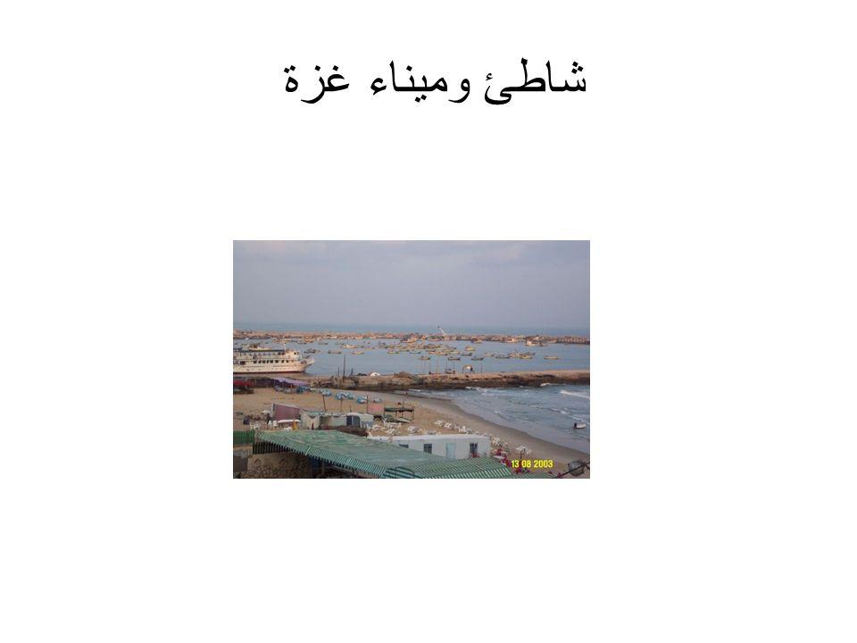 شاطئ وميناء غزة