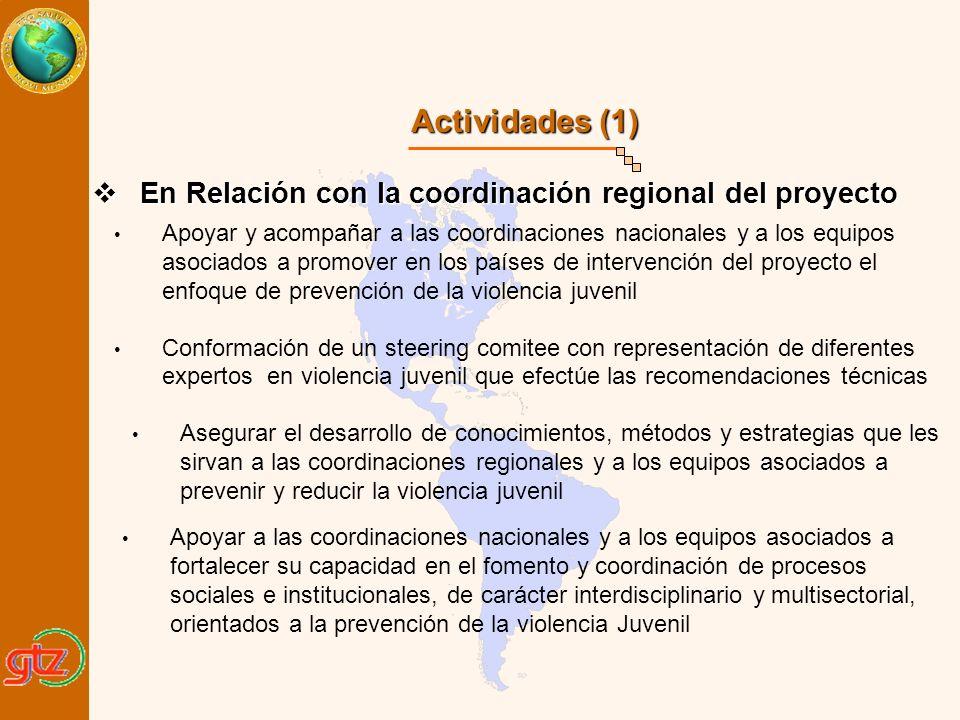 Actividades (1) En Relación con la coordinación regional del proyecto En Relación con la coordinación regional del proyecto Conformación de un steerin