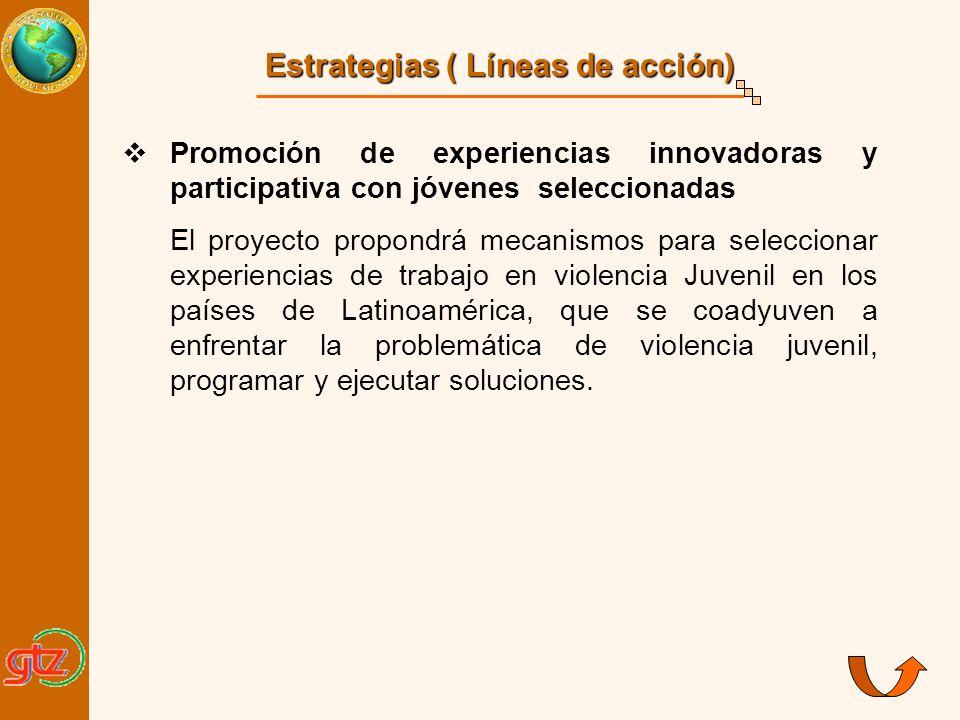 Estrategias ( Líneas de acción) Promoción de experiencias innovadoras y participativa con jóvenes seleccionadas El proyecto propondrá mecanismos para