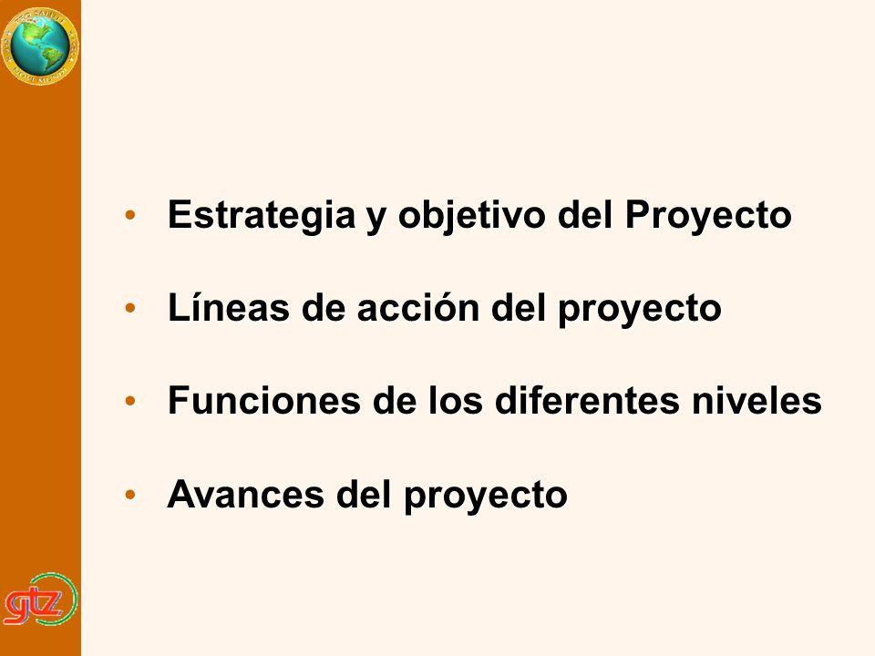 Estrategia y objetivo del Proyecto Estrategia y objetivo del Proyecto Líneas de acción del proyecto Líneas de acción del proyecto Funciones de los dif