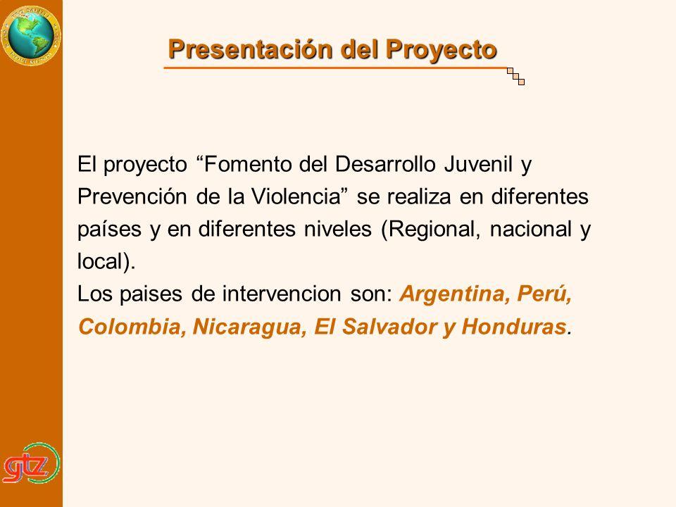 Presentación del Proyecto El proyecto Fomento del Desarrollo Juvenil y Prevención de la Violencia se realiza en diferentes países y en diferentes nive