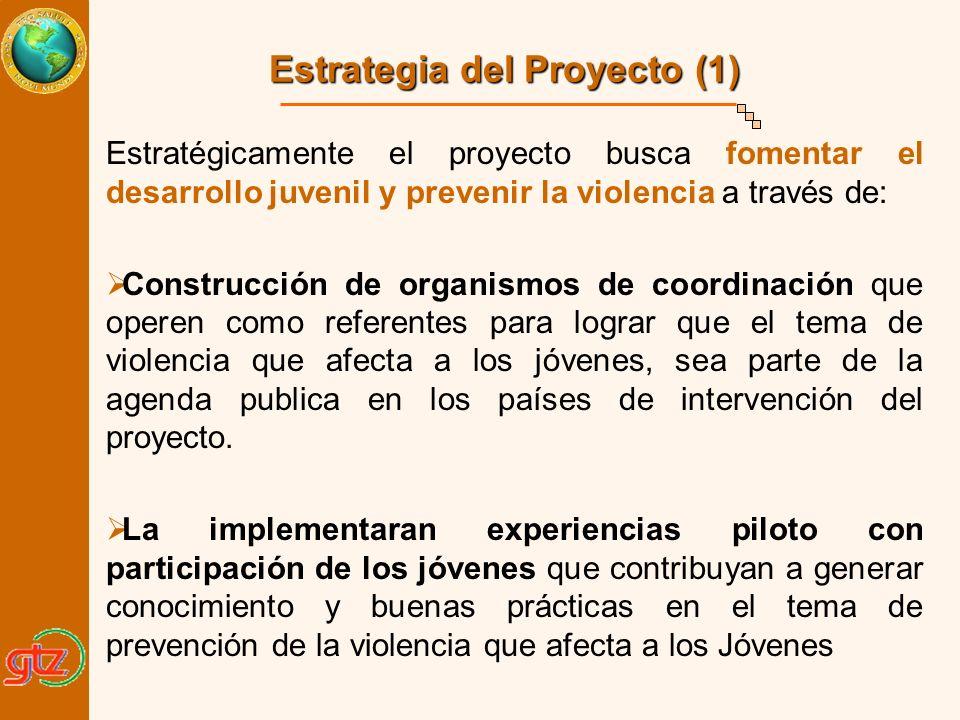 Estratégicamente el proyecto busca fomentar el desarrollo juvenil y prevenir la violencia a través de: Construcción de organismos de coordinación que