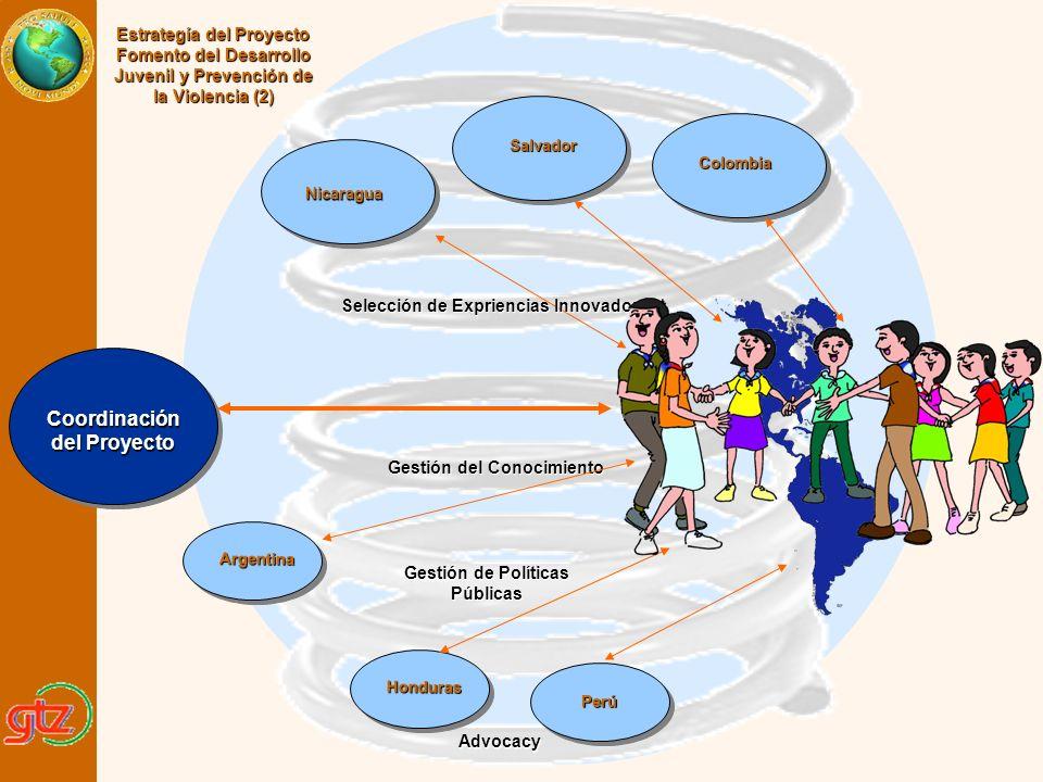 Advocacy Gestión de Políticas Públicas Gestión del Conocimiento Selección de Expriencias Innovadoras Estrategía del Proyecto Fomento del Desarrollo Ju