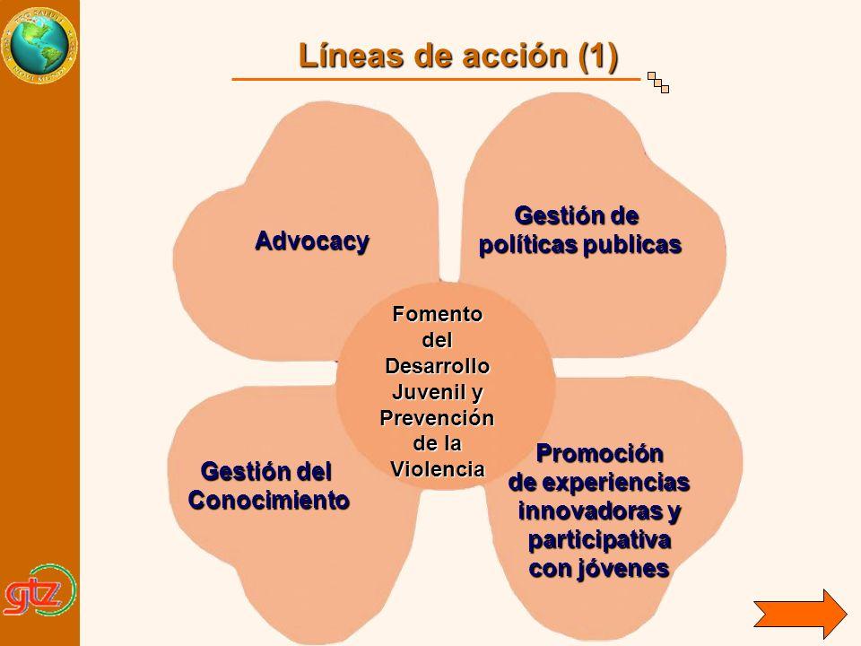 Advocacy Gestión del Gestión del Conocimiento Gestión de políticas publicas Gestión de políticas publicas Promoción de experiencias innovadoras y part