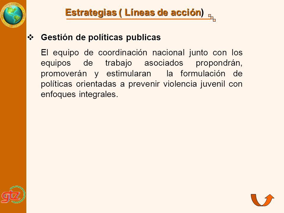 Estrategias ( Líneas de acción) Gestión de políticas publicas Gestión de políticas publicas El equipo de coordinación nacional junto con los equipos d