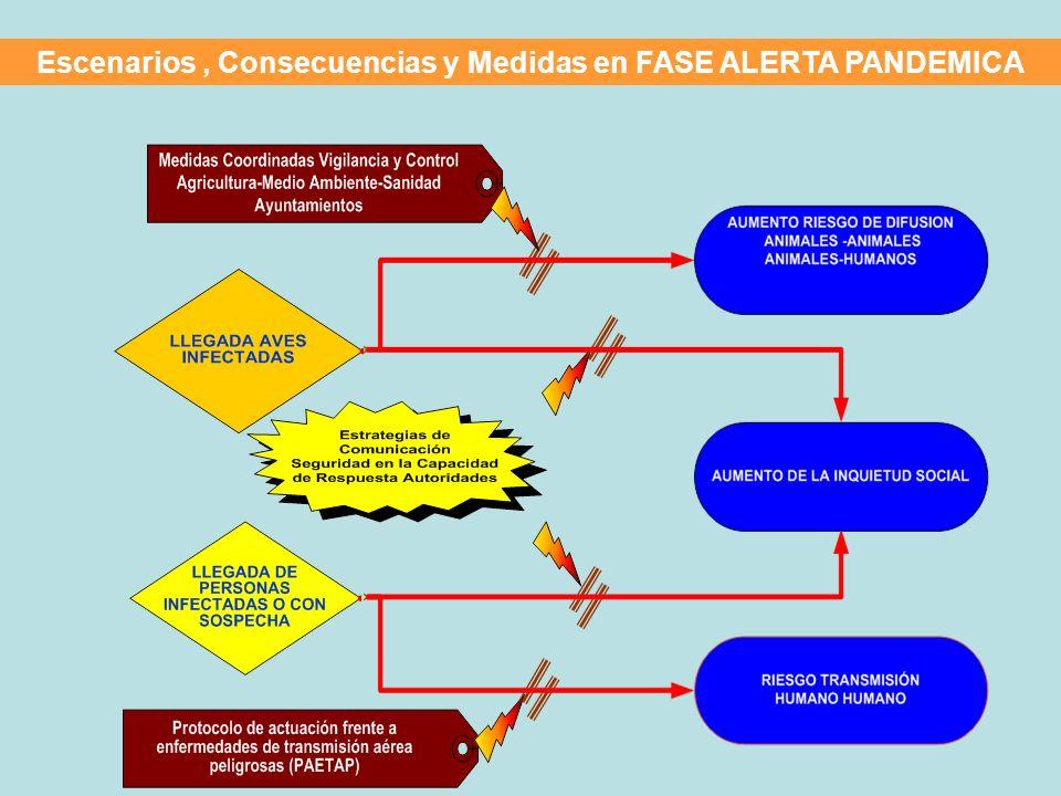 Escenarios, Consecuencias y Medidas en FASE ALERTA PANDEMICA