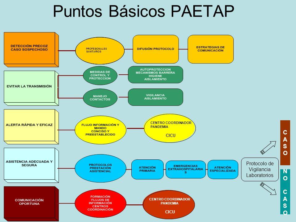 Puntos Básicos PAETAP CASOCASO NO CASONO CASO Protocolo de Vigilancia Laboratorios CENTRO COORDINADOR PANDEMIA CICU CENTRO COORDINADOR PANDEMIA CICU P