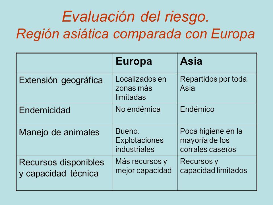 Evaluación del riesgo. Región asiática comparada con Europa EuropaAsia Extensión geográfica Localizados en zonas más limitadas Repartidos por toda Asi
