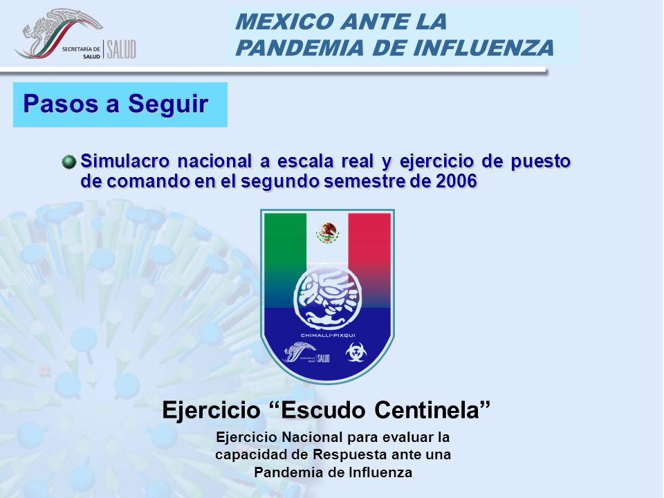 MEXICO ANTE LA PANDEMIA DE INFLUENZA Pasos a Seguir Simulacro nacional a escala real y ejercicio de puesto de comando en el segundo semestre de 2006Simulacro nacional a escala real y ejercicio de puesto de comando en el segundo semestre de 2006 Ejercicio Escudo Centinela Ejercicio Nacional para evaluar la capacidad de Respuesta ante una Pandemia de Influenza