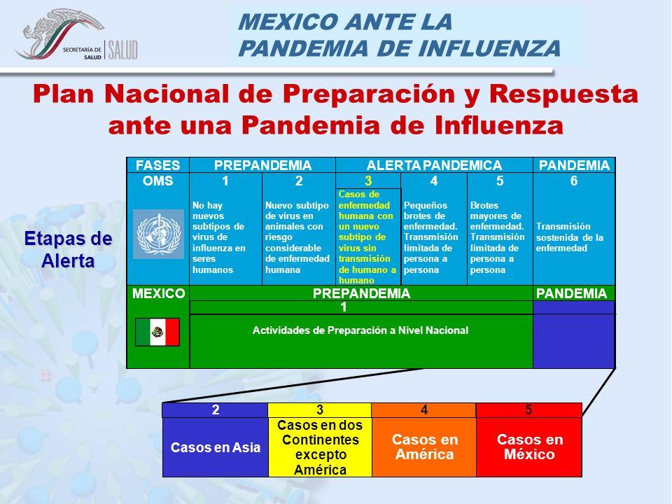 MEXICO ANTE LA PANDEMIA DE INFLUENZA FASESPREPANDEMIAALERTA PANDEMICAPANDEMIA 123456OMS No hay nuevos subtipos de virus de influenza en seres humanos