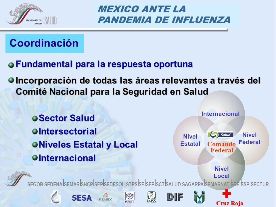 MEXICO ANTE LA PANDEMIA DE INFLUENZA Coordinación Fundamental para la respuesta oportunaFundamental para la respuesta oportuna Incorporación de todas las áreas relevantes a través del Comité Nacional para la Seguridad en SaludIncorporación de todas las áreas relevantes a través del Comité Nacional para la Seguridad en Salud Sector Salud Sector Salud Intersectorial Intersectorial Niveles Estatal y Local Niveles Estatal y Local Internacional Internacional Internacional Nivel Federal Nivel Estatal Nivel Local Comando Federal SESA Cruz Roja SEGOB SEDENA SEMAR SHCP SFP SEDESOL STPS SE SEP SCT SALUD SAGARPA SEMARNAT SRE SSP SECTUR