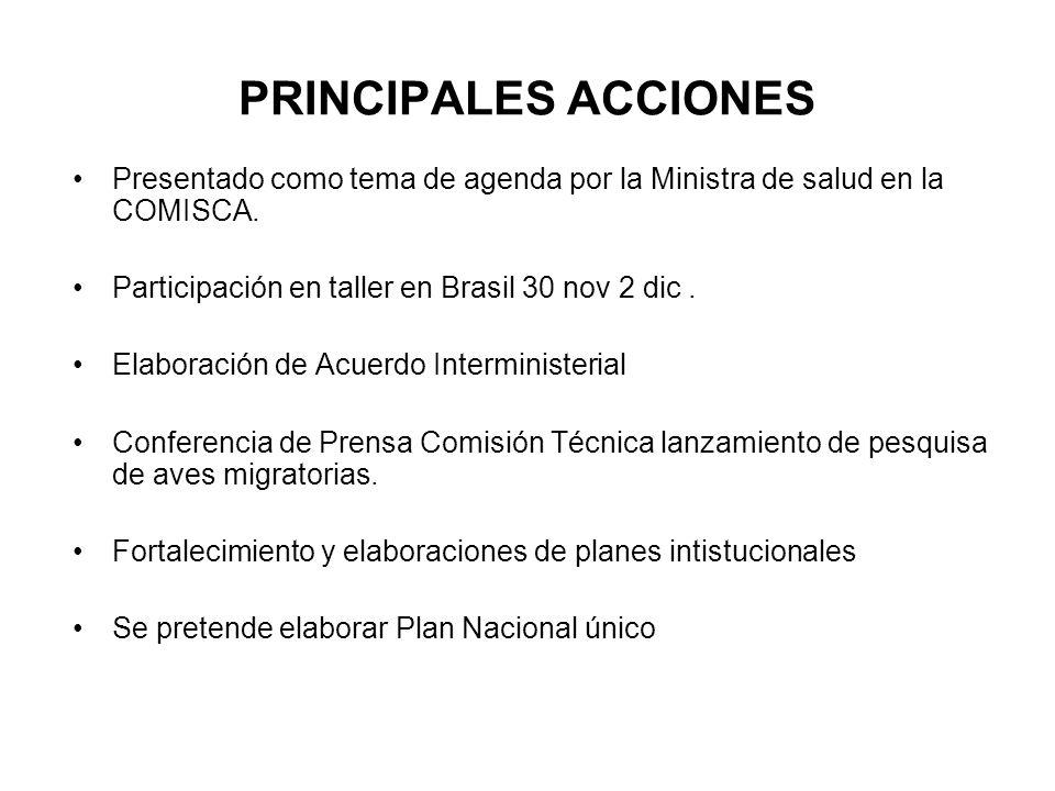 PRINCIPALES ACCIONES Presentado como tema de agenda por la Ministra de salud en la COMISCA.
